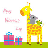 Happy Valentines Day. Love card. Cute giraffe, koala and parrot. Giftbox set Baby background Flat design Stock Images