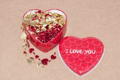 Happy Valentines Day. Love and happiness... Stock Images