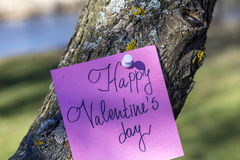 HAPPY valentines day pink greeting card hanging on a  tree Stock Image
