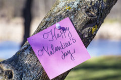 HAPPY valentines day pink greeting card hanging on a  tree Royalty Free Stock Photography