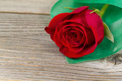 Happy Valentines day with single freshly cut red rose on rustic Royalty Free Stock Photography