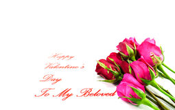 Happy Valentines Day. Six stemmed roses for my beloved Valentine Stock Image