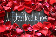 Happy Valentines day! text on blackboard on background of rose petals Stock Image