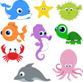 Happy Vector Cartoon Sealife. Various vector illustrations of sea creatures looking happy. Each illustration uses global color swatches for easily switching the Royalty Free Stock Photo