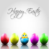 Happy Vector Easter Background with Chick in Broke Royalty Free Stock Photography