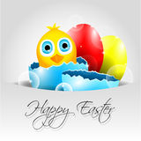 Happy Vector Easter Background with chick in broke Stock Image