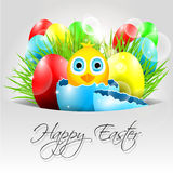 Happy Vector Easter Background with chick in broke Royalty Free Stock Images