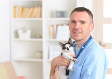 Happy vet with cat. Happy vet with a cat Royalty Free Stock Photography