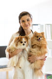 Happy vet with dogs Stock Image