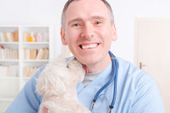 Happy vet holding a little dog Royalty Free Stock Photo
