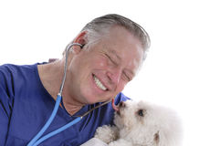 Happy veterinarian Royalty Free Stock Image