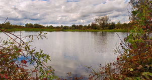 Happy walk by the pond. With views of cumulus clouds and trees Royalty Free Stock Photography