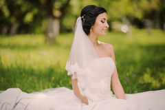 Happy wedding bride on nature Royalty Free Stock Photo
