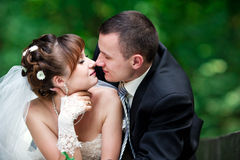 Happy wedding couple Stock Image