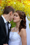 Happy wedding couple. Bride and Groom kissing in park stock images
