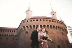 Happy wedding couple, groom, bride with pink dress hugging and smiling each other on the background walls in castle Royalty Free Stock Photography