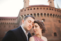 Happy wedding couple, groom, bride with pink dress hugging and smiling each other on the background walls in castle Stock Photos