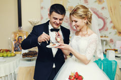 Happy wedding couple handsome groom and blonde bride carving del Stock Images