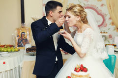 Happy wedding couple handsome groom and blonde bride eating deli Royalty Free Stock Image