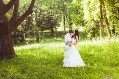 Happy wedding couple Royalty Free Stock Photo