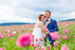Happy wedding couple in pink poppy field Royalty Free Stock Image