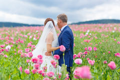 Happy wedding couple in pink poppy field Royalty Free Stock Photos