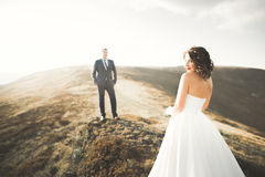 Happy wedding couple posing over beautiful landscape in the mountains Stock Photos