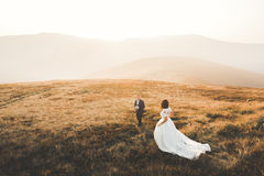 Happy wedding couple posing over beautiful landscape in the mountains Royalty Free Stock Photo