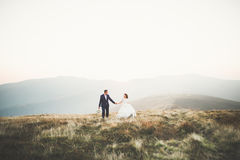 Happy wedding couple posing over beautiful landscape in the mountains Royalty Free Stock Images