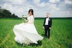 Happy wedding couple walking in the field. Beautiful wedding couple walking in the green field. Bride carrying her wedding bouquet and spinning. Groom looking at Stock Images