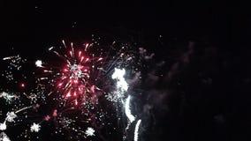 Happy wedding couple watching fireworks salute