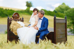 Happy wedding couple in wheat field Stock Images