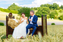 Happy wedding couple in wheat field Royalty Free Stock Photo