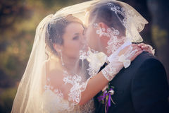Wedding shot of bride and groom in park Royalty Free Stock Photo