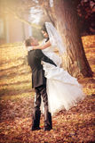 Wedding shot of bride and groom in park Stock Image