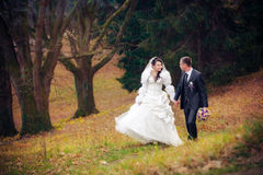 Wedding shot of bride and groom in park Royalty Free Stock Image