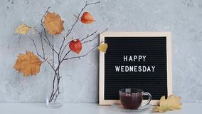 Happy Wednesday text on black letter board and bouquet of branches with yellow leaves on clothespins in vase on table agains stone. Gray wall. Concept Hello stock video