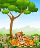 Happy wild animal cartoon in the jungle Stock Photos