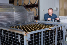 Happy wine maker unloads containers with bottles Stock Image