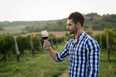 Winegrower tasting wine in vineyard. Happy winegrower tasting wine in vineyard in summer Royalty Free Stock Photography