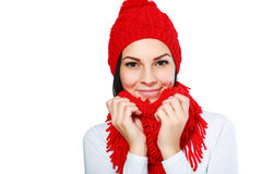 Happy winter Stock Images