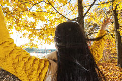 Happy woman in autumn park Royalty Free Stock Photography