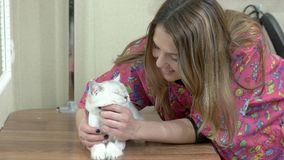 Happy woman and a cat. stock footage