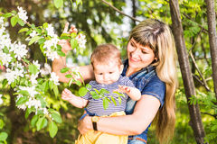 Happy woman and child in the blooming spring garden.  Mothers day holiday concept Royalty Free Stock Photography