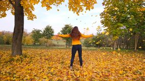 Happy woman dancing and turning around in falling yellow leaves. Girl spinning enjoy foliage color viewing in maple leaves stock video footage