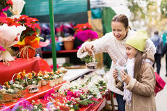 Happy woman with  daughter  buying Christmas floral composition Stock Photography
