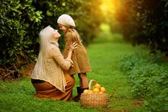 Happy woman with daughter in sunny garden. Side view of loving mother with little girl on green meadow with basket of fruit in green sunny orchard royalty free stock images