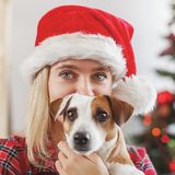 Happy woman with dog in christmas decoration stock photography