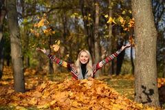 Happy woman drop up leaves in autumn park. Portrait close up of young beautiful woman, on background autumn park Stock Images