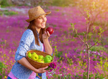 Happy woman eating apple. Cute girl holding in hands basket with fresh ripe apples, having fun on pink floral field, harvest season concept Royalty Free Stock Image